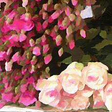 Paris Flower Market V (Square 1)