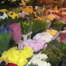 Paris Flower Market I (Square)