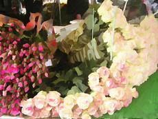 Paris Flower Market V