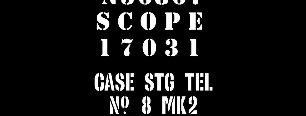 No32 Scope Case marking