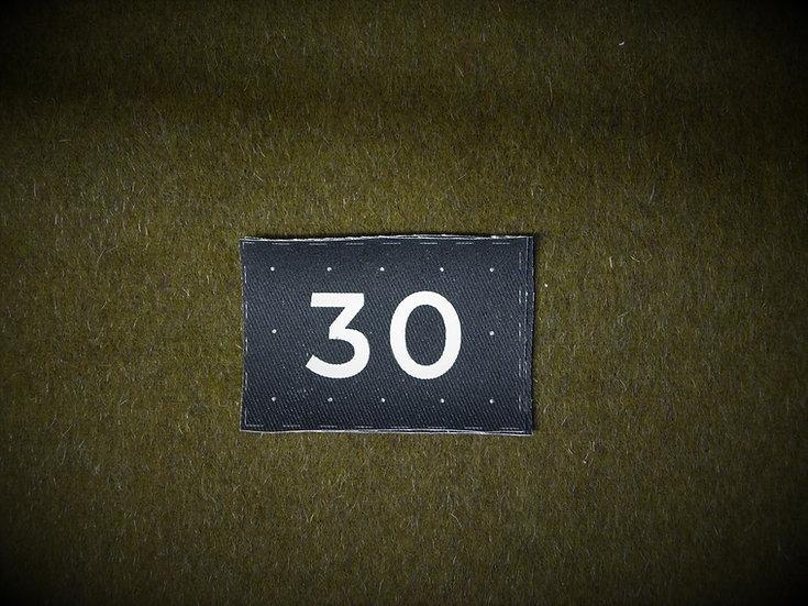 30 Assult Unit Royal Navy