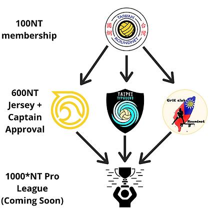 Membership flow (small).png