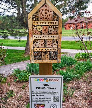 Millenium Garden bee condo