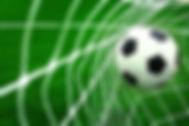 ball & net 2.jpg