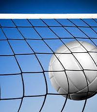 ball & net.jpg