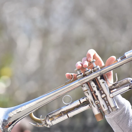 Woodwinds and Brass Competition