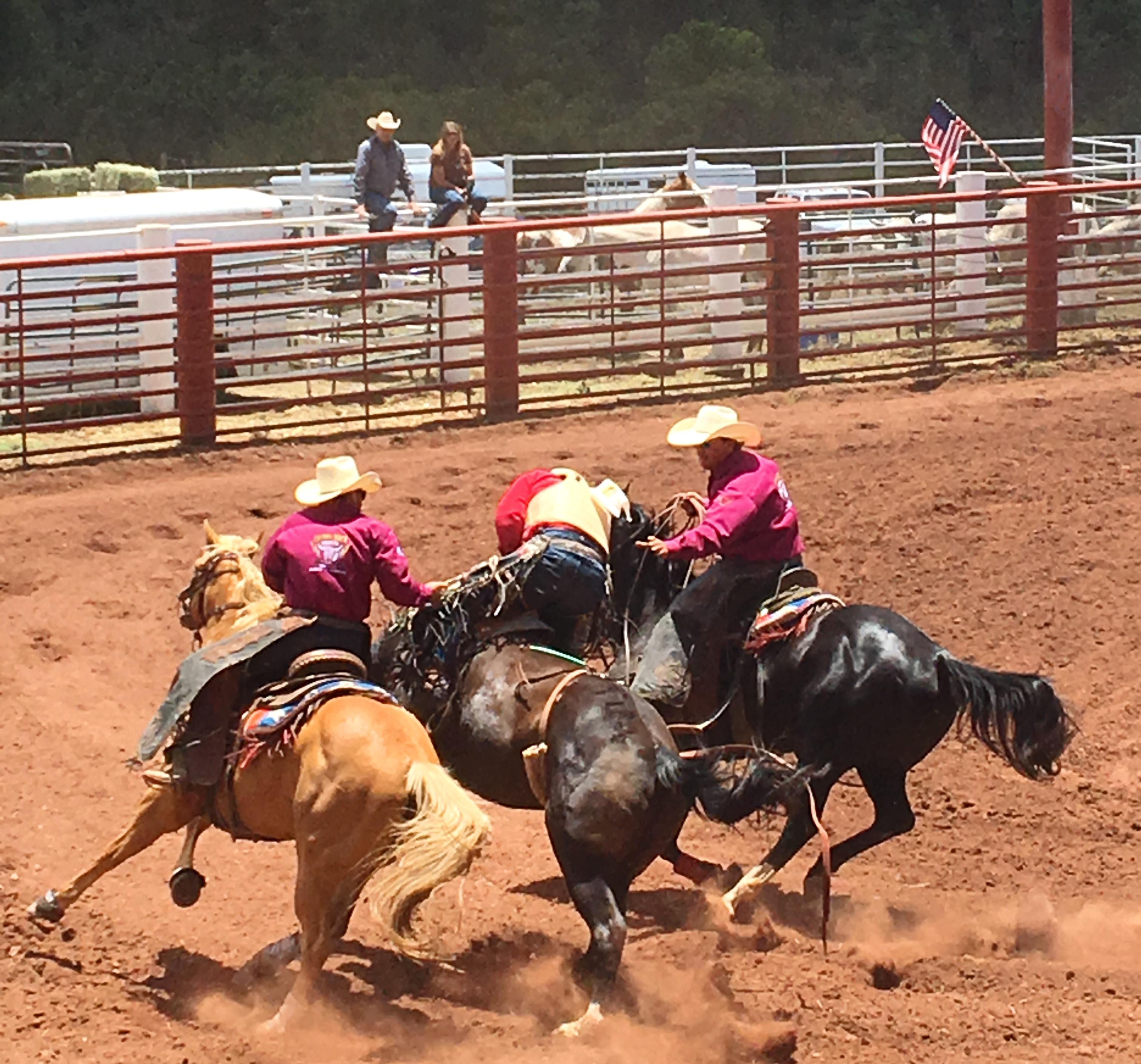 rodeos (1)