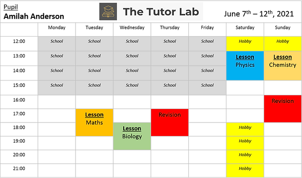 The tutor lab learning plan