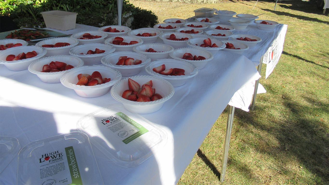 Hugh Lowe Farms Strawberries