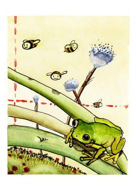 Lil' Frog