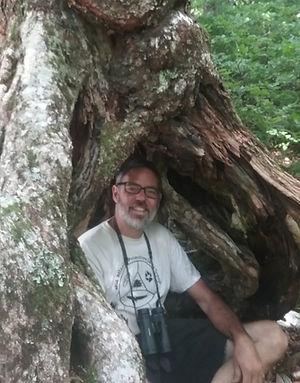 jeff in tree trunk.jpg