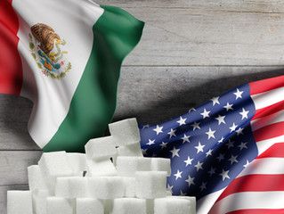 Mexican Sugar Agreement:                    One Year Later