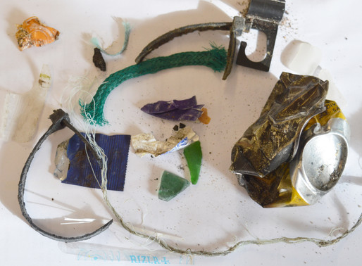 What's the deal with Microplastics?