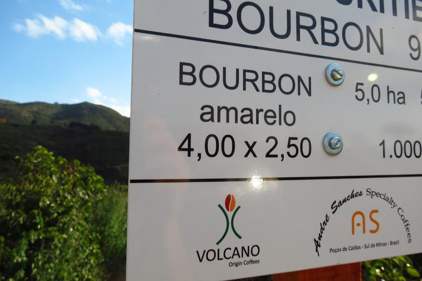 Bourbon Amarelo.jpg