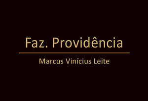 Marcus Vinícius Providência.jpg