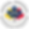 CVEF_logo-01 copy.png