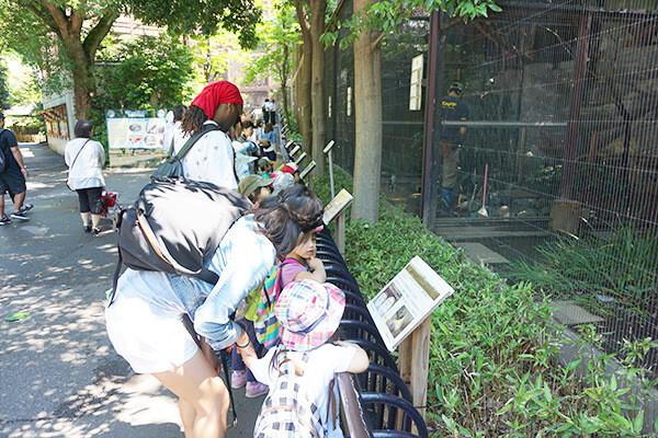 上野動物園遠足3