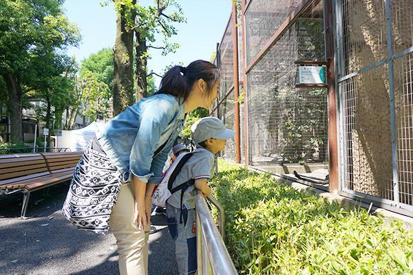上野動物園遠足2