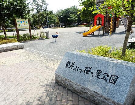 当プリスクールの近くの染井よしの桜の里公園の写真です。