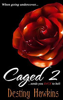Caged 2.jpg