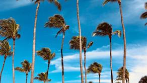 Mijn 4 beste tips met activiteiten die je gedaan moet hebben in Aruba