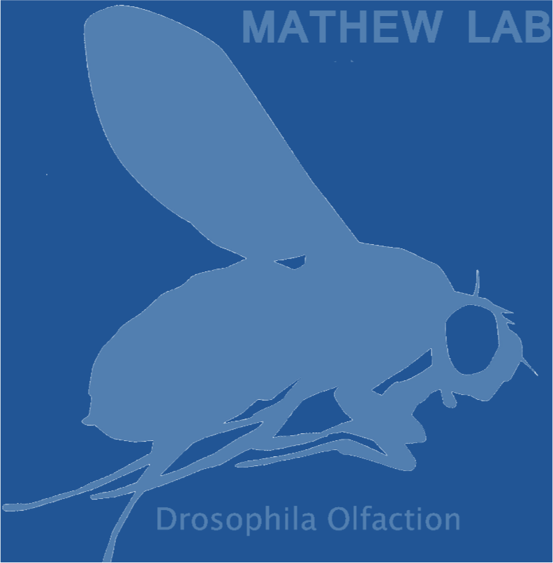 Mathew Lab