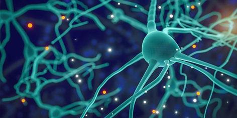 neuron-bottlenecks-696x348.jpg