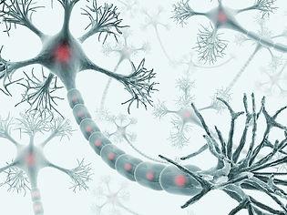 g-neuron-56a792cd5f9b58b7d0ebd043.jpg