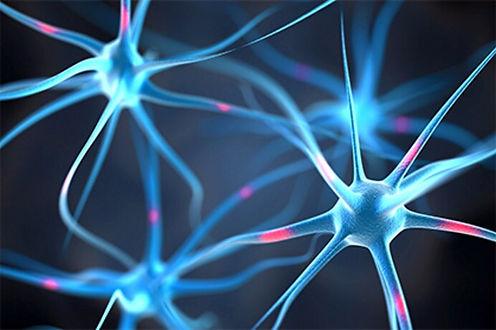 405rmq_getty_rf_neurons_in_the_brain.jpg