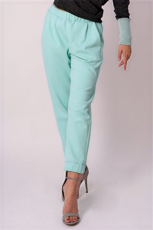 Pants with elastic waistband in Mint
