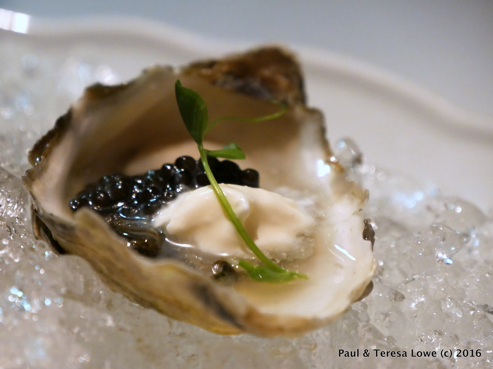 Caviar & Raw Oyster from Araxi Restaurant, Whistler, BC