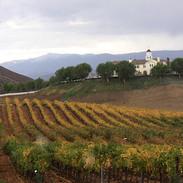 Temecula Leonesse Winery Vineyard Exteri