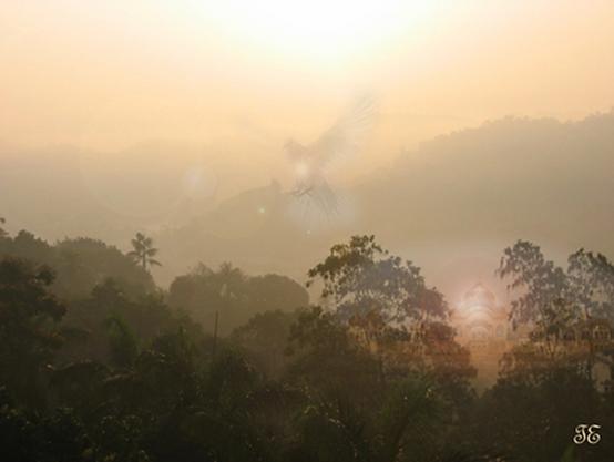 Sri-Lanka-3.png