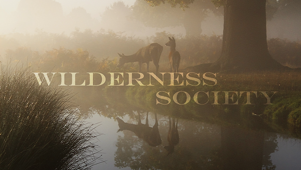 Wilderness Society_3.png
