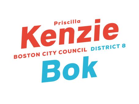 Kenzie Wins Preliminary Election with Over 50% of the Vote