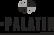 The Palatin Group - Logo Option 1 - tran