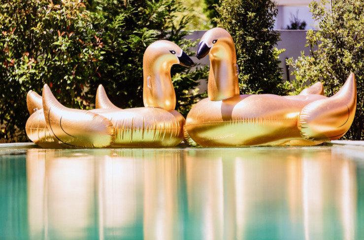 SUNVIBES -Cygne géant doré