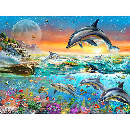 Evening Dolphins