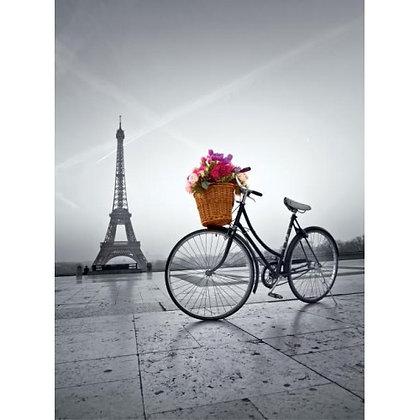 Romantic Promenade in Paris