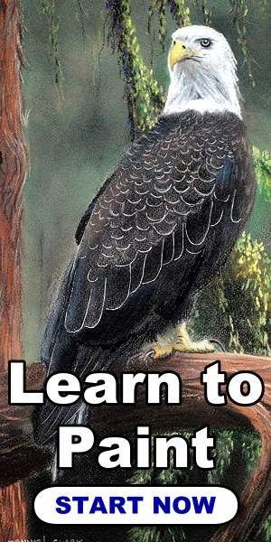 300x600-paint-me-eagle.jpg