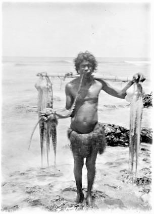 Traditional octopus fishing on Banaba early 1900s