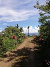 Buakonikai Village, Rai, Fiji by Itinter