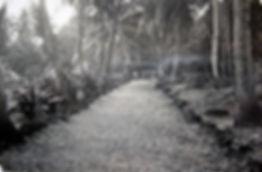 Pathway Tabiang Village Banaba