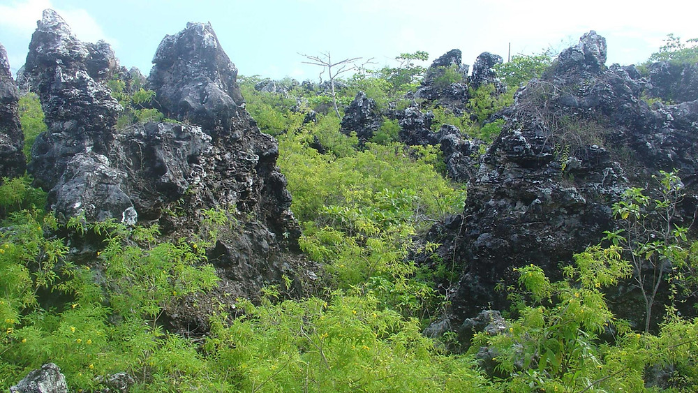 Old phosphate diggings Banaba with coral pinnacles left exposed