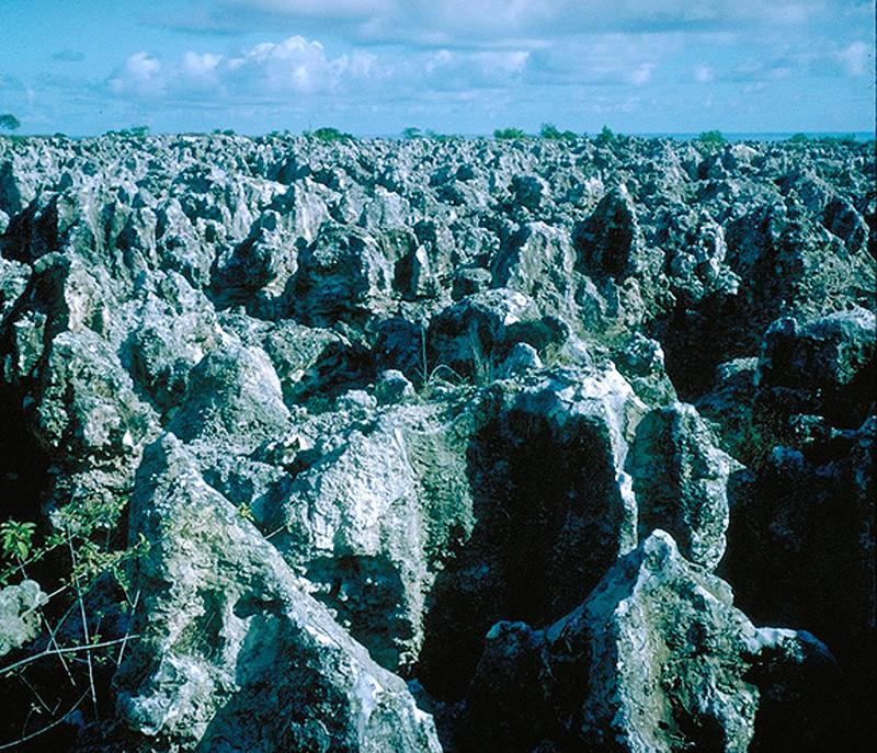 The devastating aftermath of phosphate mining on Banaba (Ocean Island)
