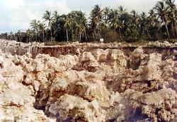 Banaban Environmental Issues
