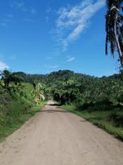 Road to Buakonikai by Itinterunga Rae Ba