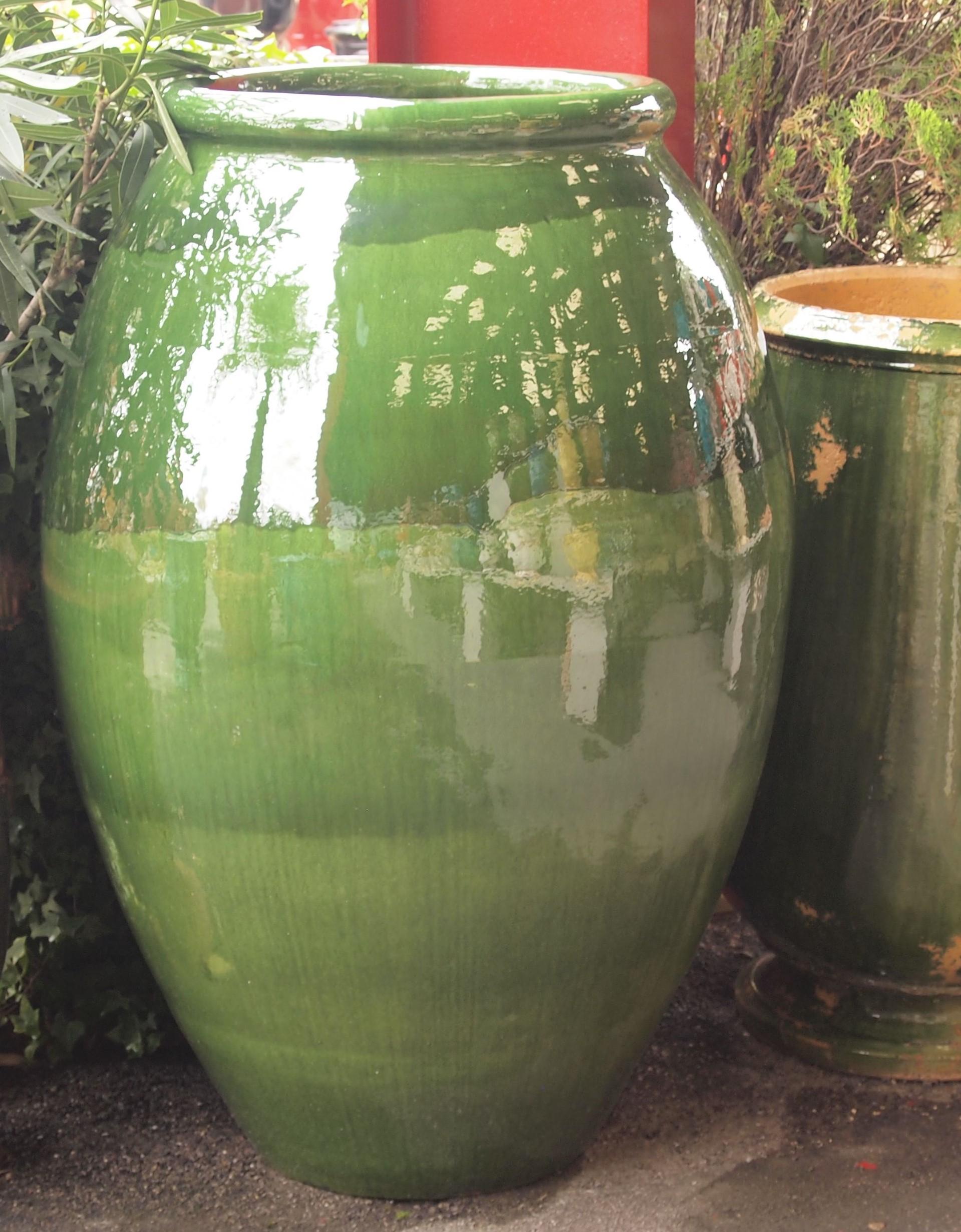 Oil Jar Olive Shape (76cm) Green