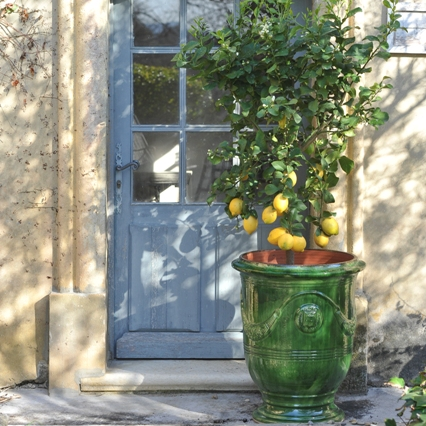 Tradition Anduze Pot Deep Green