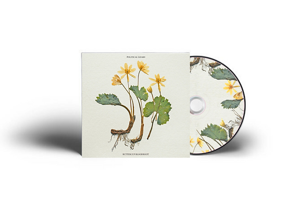 Buttercup Bloodroot CD